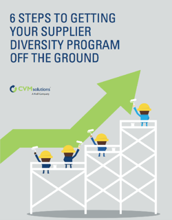 6-steps-to-getting-your-supplier-diversity-program-off-the-ground