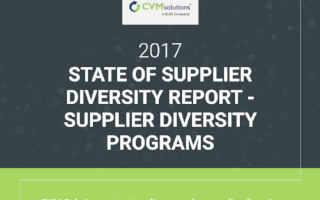 infographic-supplier-diversity-programs
